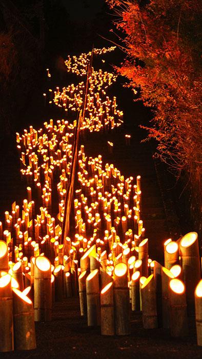 大分県の有名な祭り「竹楽」。竹田市で三夜、町の人が竹灯籠を1つずつ灯し、さまざまな場所を照らす。祭りのあとは、どれもリサイクルされる