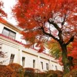 東武鉄道、金谷ホテルにて「ワーケーションプラン」の提供を開始