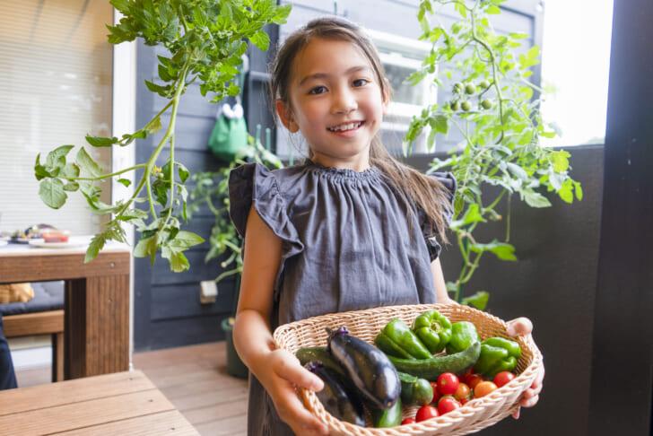 株式会社温泉道場「野菜収穫付き宿泊プラン」